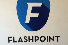 Bedrijven Flashpoint Security